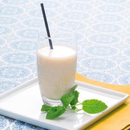 Vanille drank ready to go – PowerSlim